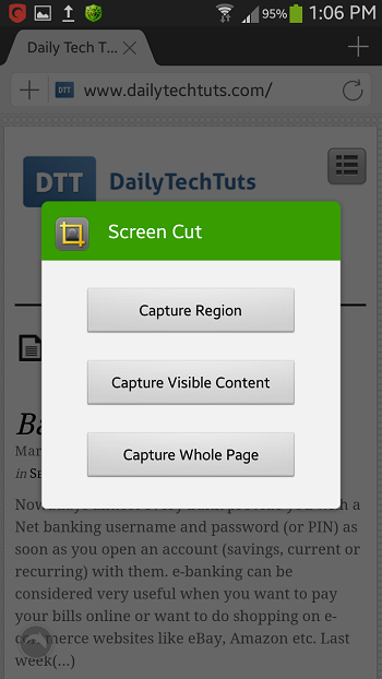 screen cut capture options