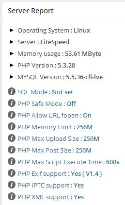 server report